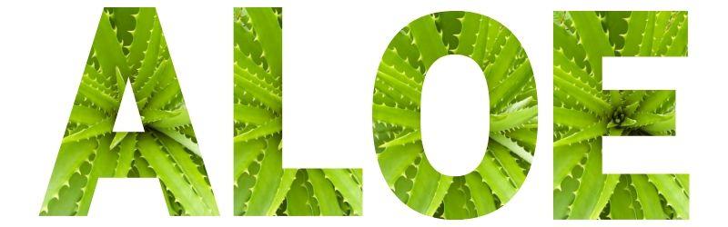 Scritta Aloe con foto di aloe vera