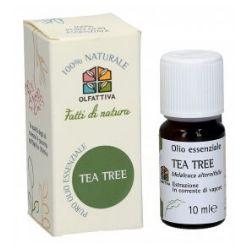 Olio essenziale Tea Tree di Olfattiva