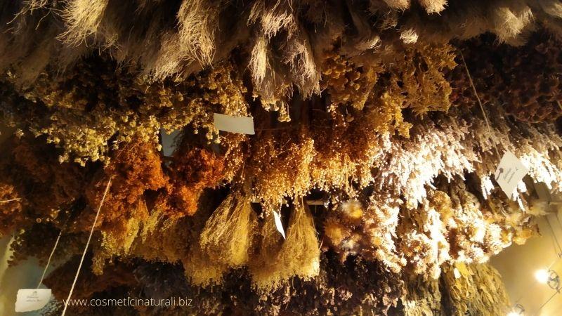 La stanza delle erbe Museo Aboca